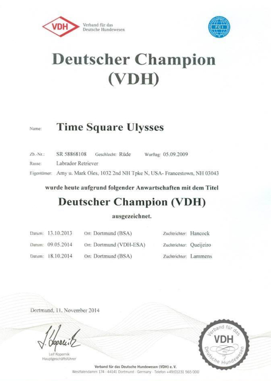 ulysses_championbevis
